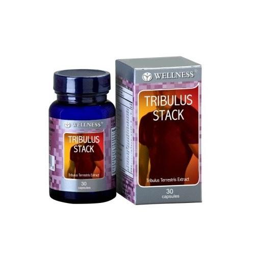 Wellness Tribulus Stack - 30 Caps
