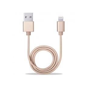 Avantree Lightning to USB 1