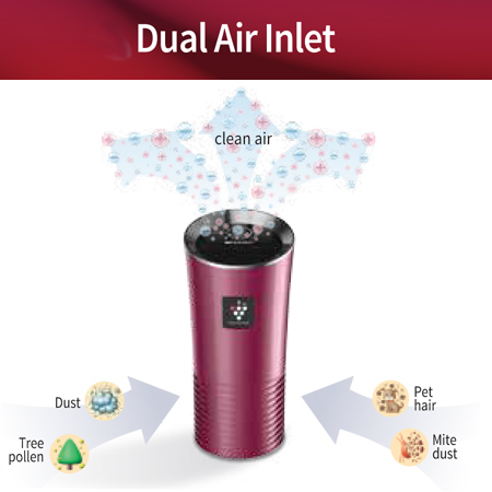 Sharp Air Purifier New High Density for Car IG-GC2Y - Black
