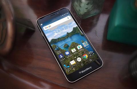 Blackberry Aurora - Black