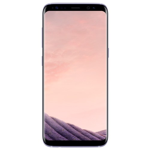 Samsung Galaxy S8+ (Orchid Gray)