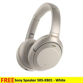 Sony Wireless Noise-Cancell
