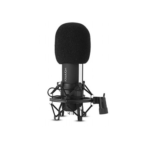Yanmai Professional Cardioid Condenser Microphone for Recording - Q8