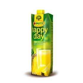 Happy Day Pineapple Fruit J