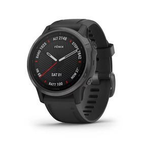 Garmin Fenix 6S 42mm - Carb
