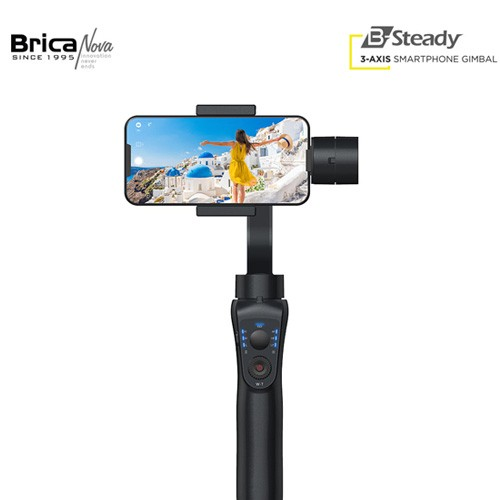 Brica B-Steady
