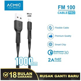 ACMIC FM100 Kabel Data Char