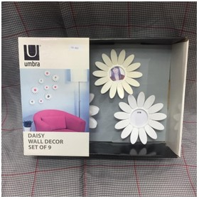 Umbra Daisy Wall Decor Set