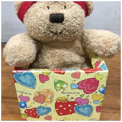 Little Bear Boneka Indian Teddy Bear - Coklat