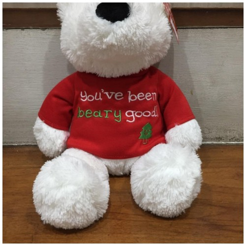 Beary Message Bears Boneka Beruang Kutub - You've been beary good