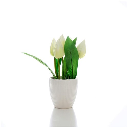 iCreate Set Bunga Hias Plastik dan pot plastik / vas pot bunga / liteta white