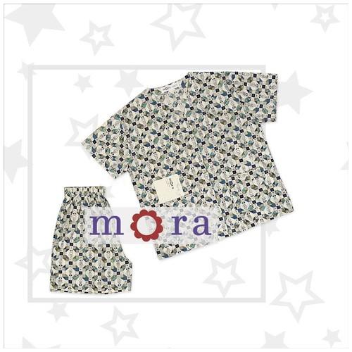 Mora Kimi 10
