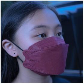 MASKER KF 94 MOUSON PROTECT