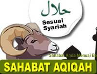 Sahabat-Aqiqah