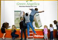 green-angelica