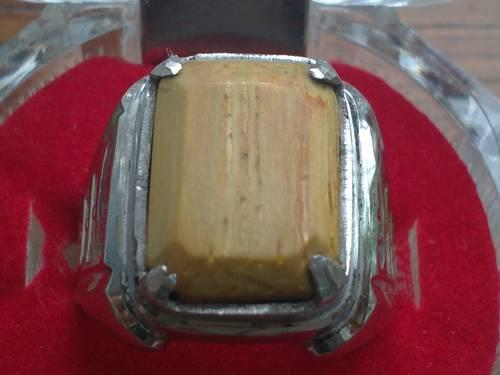 Batu Fosil Bambu Asal Banten Sungguh Diluar Dugaan Waktu Itu Saya