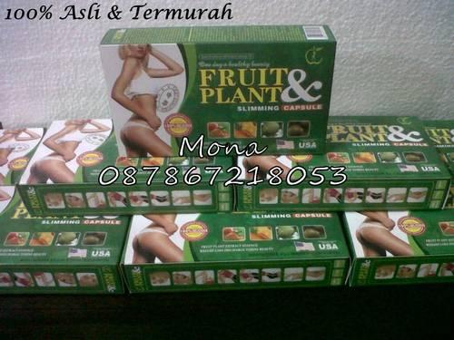 dinomarket pasardino fruit plant slimming capsules