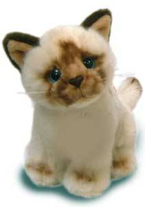 Jual Boneka Kucing SiamKucing Siam