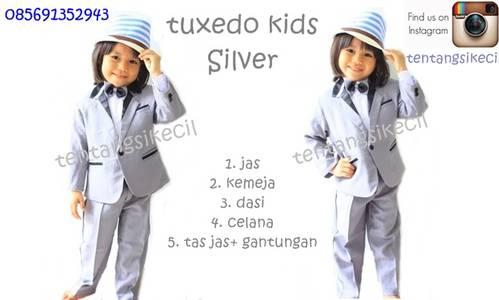 Jual Tuxedo Anak /jas bayi anak