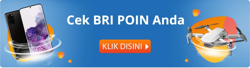 banner-bri-poin