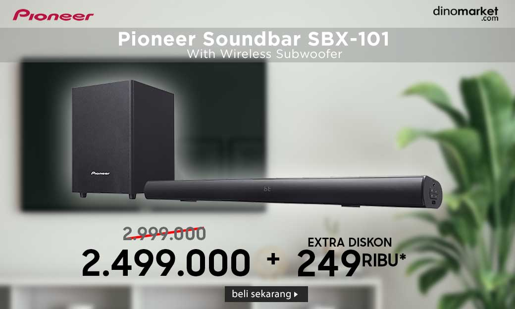 Pioneer SBX101