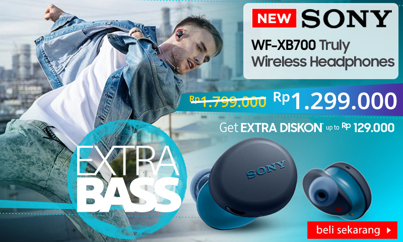 Sony-WFXB700