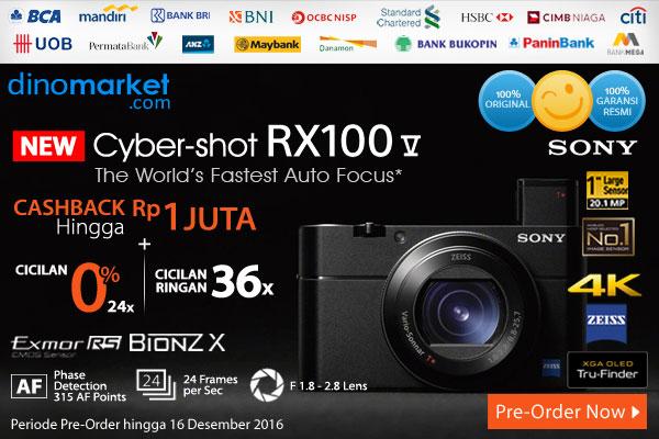 Sony R100 Mark V